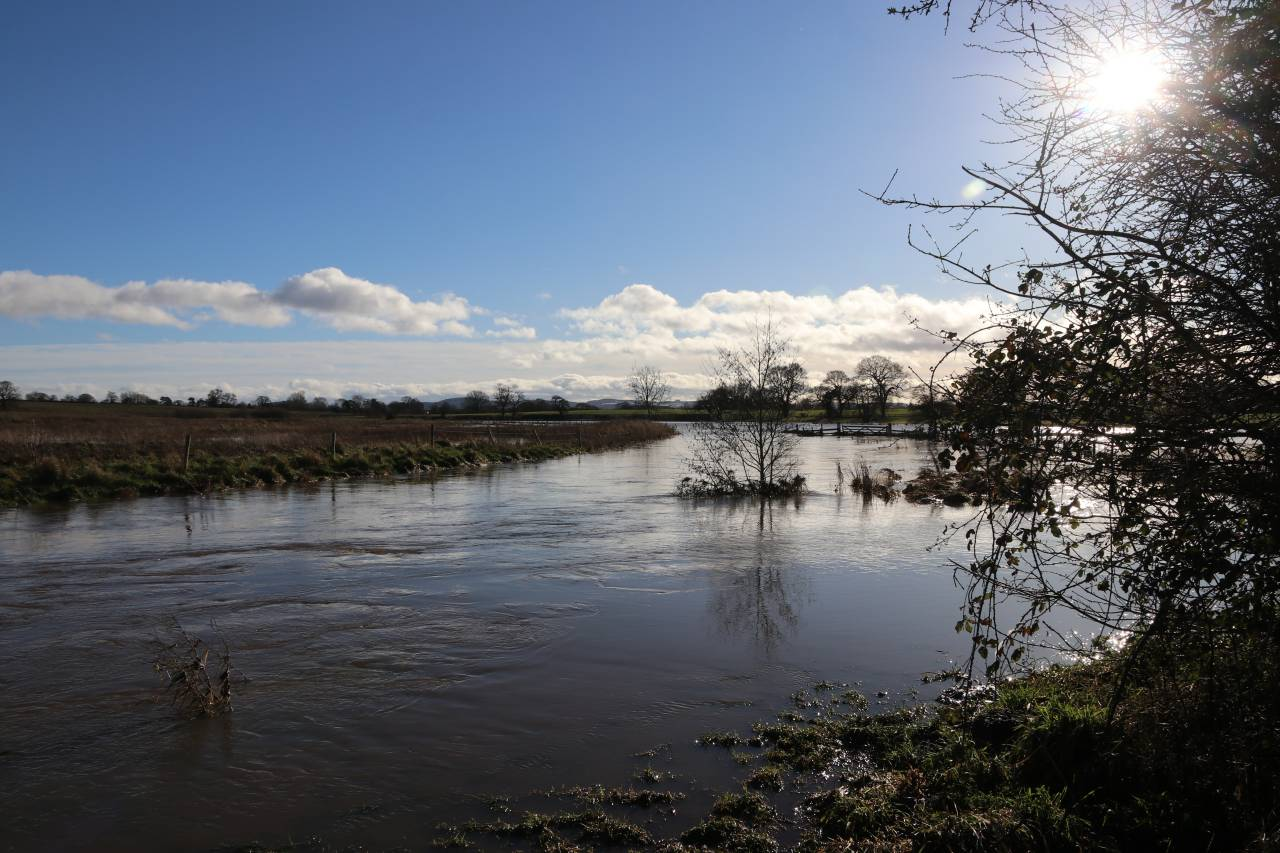 Flooded Gowy